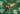 shooting-kids-palmier-naturemorte-angulus-smallable-rivieras-teurgouleclub-setdesign-papier-palmtree-jpg